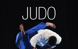Journée de découverte judo sport adapté 95